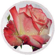 Nice Rose Round Beach Towel by Elvira Ladocki