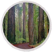 Round Beach Towel featuring the photograph 2b6391 Armstrong Redwoods Ca by Ed Cooper Photography