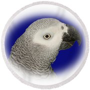 Round Beach Towel featuring the photograph African Grey Parrot  by Debbie Stahre
