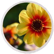 Autumn Flowers Round Beach Towel