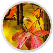 Round Beach Towel featuring the photograph Fall Colors by Eduard Moldoveanu