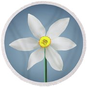 Round Beach Towel featuring the photograph Flower Paradise by Bess Hamiti