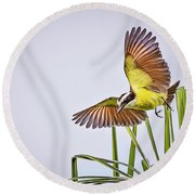 Great Crested Flycatcher Round Beach Towel