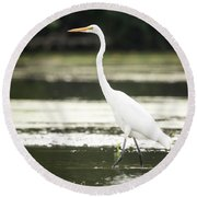 Round Beach Towel featuring the photograph Great Egret  by Ricky L Jones