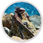 Green Iguana Round Beach Towel