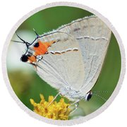 Hairstreak Round Beach Towel
