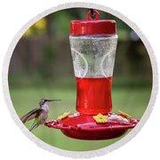 My Sweet Hummingbird Round Beach Towel