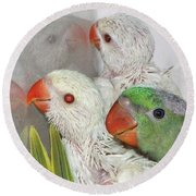 Round Beach Towel featuring the photograph 3 Is Company 4 Is A Crowd by Debbie Stahre