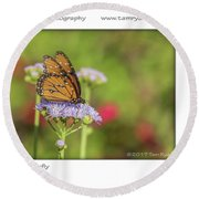 Monarch Butterfly Round Beach Towel by Tam Ryan