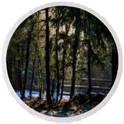 Round Beach Towel featuring the photograph Winter Light  by Inge Riis McDonald