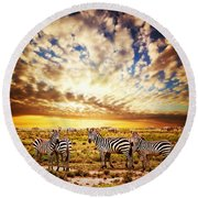 Zebras Herd On African Savanna At Sunset. Round Beach Towel