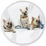 3010.064 Therapet Round Beach Towel by M K  Miller