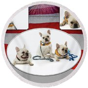 3010.069 Therapet Round Beach Towel by M K  Miller