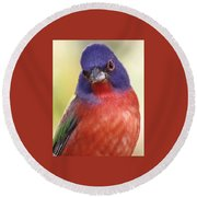 Painted Bunting Round Beach Towel
