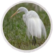 Great Egret Round Beach Towel by Tam Ryan