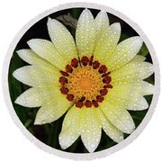Nice Gazania Round Beach Towel by Elvira Ladocki