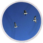 4 Geese In Flight Round Beach Towel