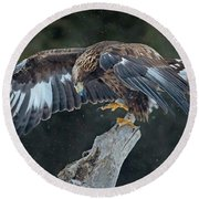 Golden Eagle Round Beach Towel by CR Courson