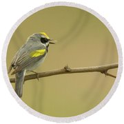 Golden-winged Warbler Round Beach Towel