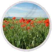 Meadow With Red Poppies Round Beach Towel