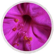 Round Beach Towel featuring the photograph 4 O'clock Bloom by Richard Rizzo