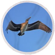 Round Beach Towel featuring the photograph 4- Pelican by Joseph Keane