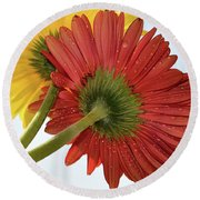 Red And Yellow Round Beach Towel by Elvira Ladocki