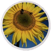 Sunflower Fields Round Beach Towel