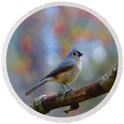 Tufted Titmouse Round Beach Towel by Robert L Jackson