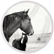 Virginia Range Mustangs Round Beach Towel