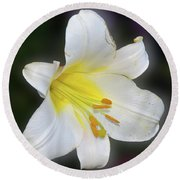 Round Beach Towel featuring the photograph White Lily by Elvira Ladocki