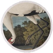 Whooping Crane Round Beach Towel by John James Audubon