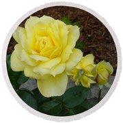 4 Yellow Roses Round Beach Towel