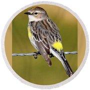 Yellow-rumped Warbler Round Beach Towel