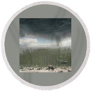 4375 Round Beach Towel by Peter Holme III