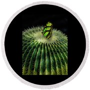 Round Beach Towel featuring the photograph 4409 by Peter Holme III