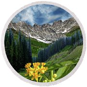Round Beach Towel featuring the photograph 4415 by Peter Holme III