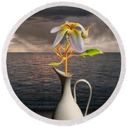 Round Beach Towel featuring the photograph 4416 by Peter Holme III