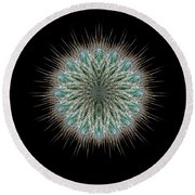 Round Beach Towel featuring the photograph 4418 by Peter Holme III