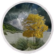 4422 Round Beach Towel by Peter Holme III