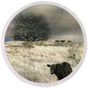 4444 Round Beach Towel by Peter Holme III