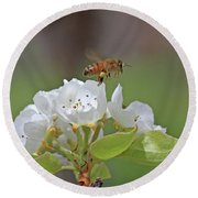 Honeybee Round Beach Towel