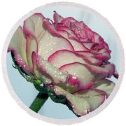 Beautiful Rose Round Beach Towel by Elvira Ladocki