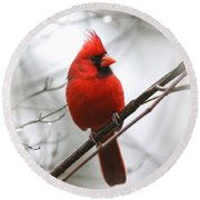 4772-001 - Northern Cardinal Round Beach Towel