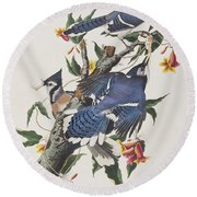 Blue Jay Round Beach Towel by John James Audubon