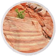 Round Beach Towel featuring the photograph Colorful Wash In Valley Of Fire by Ray Mathis