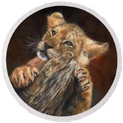 Lion Cub Round Beach Towel by David Stribbling