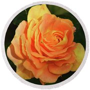 Round Beach Towel featuring the photograph Orange Rose by Elvira Ladocki