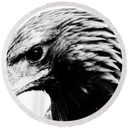 Portrait Of Bird Of Prey  Round Beach Towel