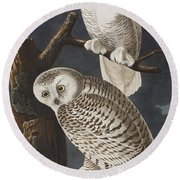 Snowy Owl Round Beach Towel by John James Audubon